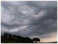 L'asperatus : nouvelle espèce de nuage?