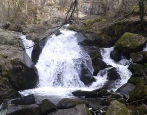 cascade Gour de daroc pisserotte