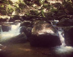 rivière Barbenant