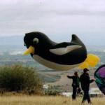 pinguin volant bis