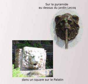 têtes de lion pt