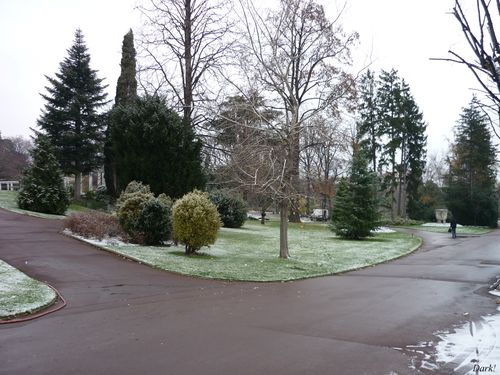 Neige jardin lecoq 14 décembre 2009