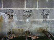 fontaine du lion 3