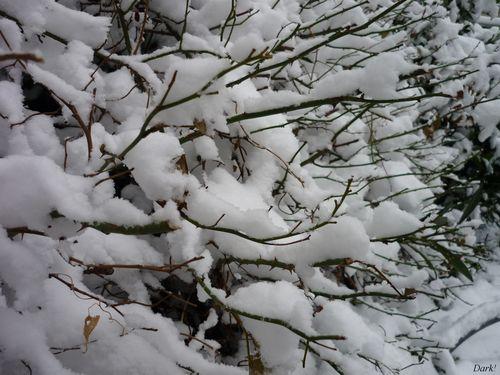 neige lundi 4 janvier 5