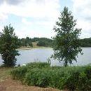 Lac d'Aubusson d'auvergne (12)