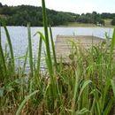 Lac d'Aubusson d'auvergne (16)