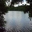 Lac d'Aubusson d'auvergne (19)