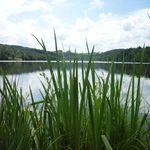 Lac d'Aubusson d'auvergne (2)