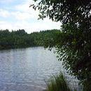 Lac d'Aubusson d'auvergne (22)