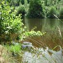 Lac d'Aubusson d'auvergne (25)