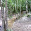 Lac d'Aubusson d'auvergne (28)