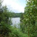 Lac d'Aubusson d'auvergne (37)