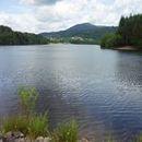 Lac d'Aubusson d'auvergne (38)