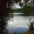 Lac d'Aubusson d'auvergne (48)