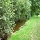 Lac d'Aubusson d'auvergne (8)