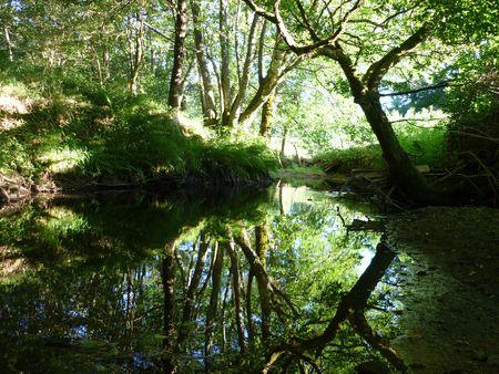 Le Miodet petite rivière du Livradois