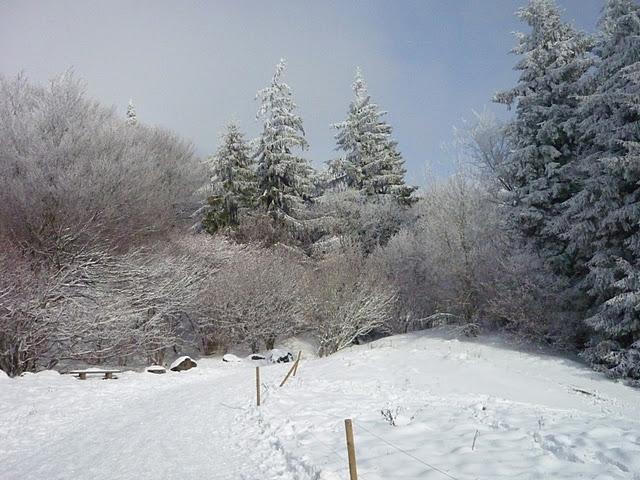 Sortie neige sur les pentes du Puy de Dôme