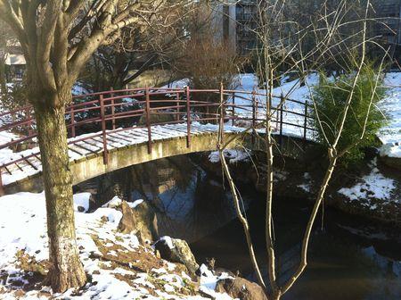 La Tiretaine entre neige, eau et glace