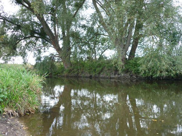 Morge-Maringues-rivière-tanneries-14 600