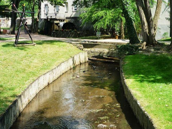 Parc Pierre Montgroux (22)