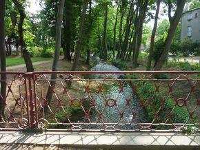 Parc Pierre Montgroux (7) 290