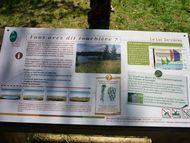 tour photos lac servières (10) 190 tourbière