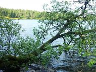 tour photos lac servières (22 190)