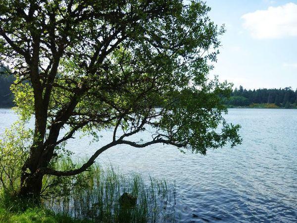 tour photos lac servières (9)