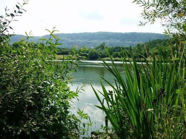 Bassin d'orage vallée du Bédat (11)