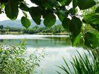 Bassin d'orage vallée du Bédat (12) 140