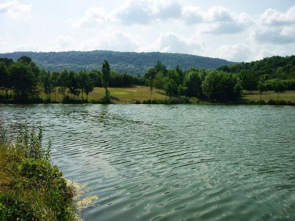 Bassin d'orage vallée du Bédat (3)