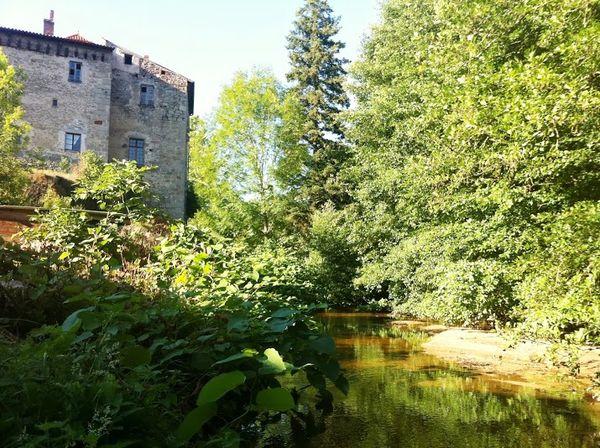 Miodet Saint dier d'Auvergne (5)