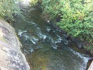Bédat ambène confluence Entraigues (3) 190
