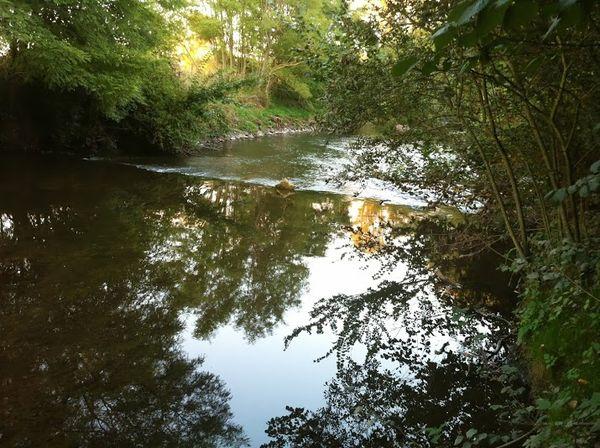 confluence Bédat Morge (1)