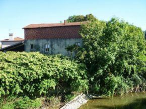 confluence Bédat Morge (5) 290