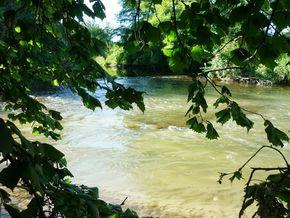 confluence Bédat Morge (6) 290