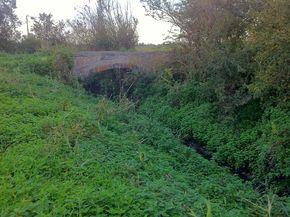 Confluence Bédat ruisseau des Guelles Pont Paquet (5) 290