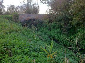 Pont Paquet Confluence Bédat ruisseau des Guelles (6) 290