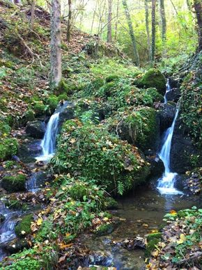 Gorges Cordoulet, (35) 290