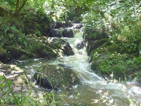 Gorges d'Enval (9) 290
