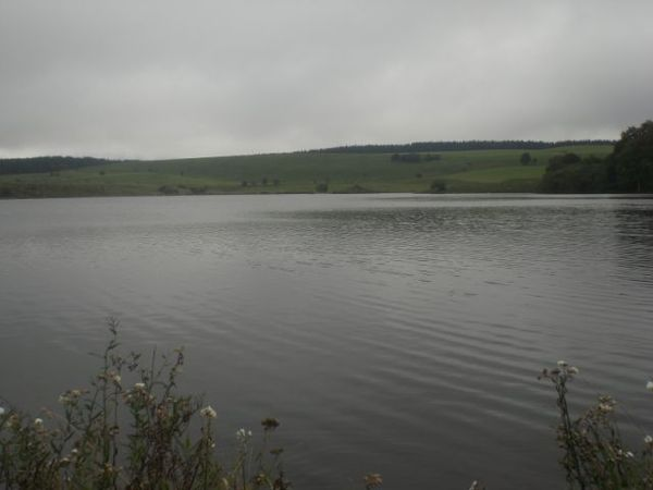 Lac de sauvages (1)