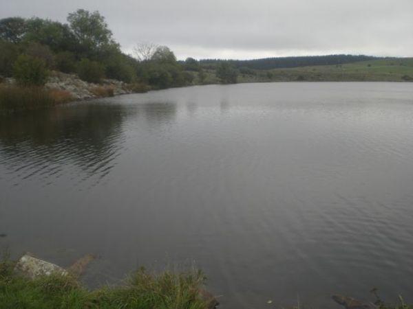 Lac de sauvages (3)