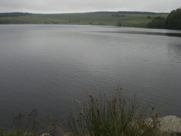 Lac de sauvages (4)