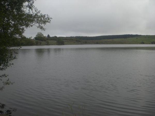 Lac de sauvages (5)