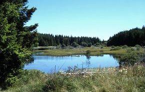 lac de Sauvages