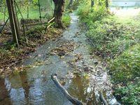 ruisseau de l'Adrienne amont Sayat