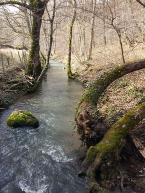 Madet rivière