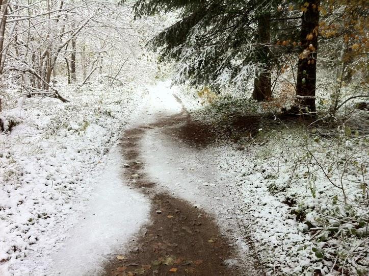 Photographies et vidéos de la neige du côté de Laschamps