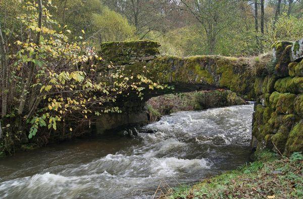 Pont massage St pierre Roche