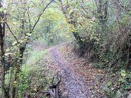 Ruisseau cheval Fontbeloux (10) 190